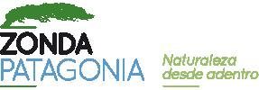 Zonda Patagonia